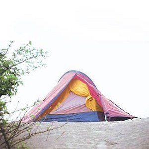 Tent meota